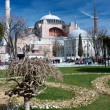 Hagia Sophia in daylight with park — Stock Photo