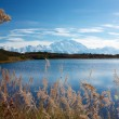 Mt. McKinley from Reflection pond — Stock Photo