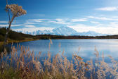 Mt. McKinley from Reflection pond — 图库照片