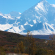 Alaska Range and hilly road in Denali National Park — 图库照片