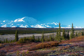 Mt. McKinley from tundra near Wonder Lake campsite — 图库照片
