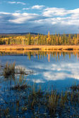 Autumn lake near Fairbanks — Zdjęcie stockowe