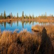 Stock Photo: Autumn lake near Fairbanks
