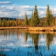 Autumn lake near Fairbanks — Stock Photo