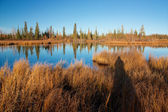 Autumn lake near Fairbanks — 图库照片