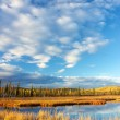 Stock Photo: Lake near Fairbanks
