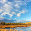Lake near Fairbanks — Stock Photo #32673901