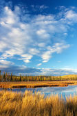 Lake near Fairbanks — Zdjęcie stockowe