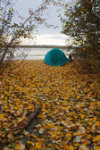 Green tent on the shore — Foto Stock