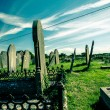 Stock Photo: Old Irish graveyard