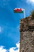 Tower of Welsh castle in — Stock Photo
