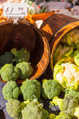 Broccoli and cauliflower in buckets — Stock Photo