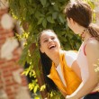 Stock Photo: Two Girls Share Joke