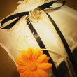 Ring Bearer's Cushion — Stockfoto