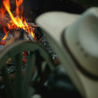 Cowboy hat and hearth — Stockfoto