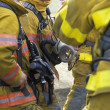 Firemen Talking — Stock Photo #31603213