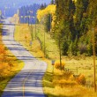 A Quiet Autumn Road — Stock Photo