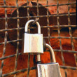Padlocks On A Weathered Wire Fence — Stock Photo