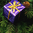 Purple Box Christmas Tree Decoration — 图库照片