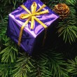 Purple Box Christmas Tree Decoration — Stock Photo