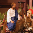 Stock Photo: Palm Sunday