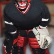 Stock Photo: Hockey Goalie In Net
