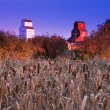 Grain Elevators With Field In Foreground — Stok fotoğraf