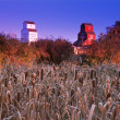 Grain Elevators With Field In Foreground — ストック写真