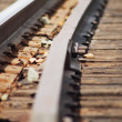Railroad Tracks — Stock Photo #31604547