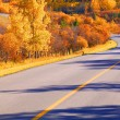 Stock Photo: Scenic Road In Autumn