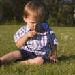 Young Boy With Magnifying Glass — Stock Photo #31608453