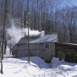 Stock Photo: Remote Log Cabin In Winter
