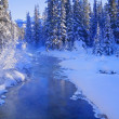 A Winter Wonderland, Banff, Alberta, Canada — Foto de Stock