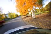 Driving Along A Scenic Road — Stock Photo
