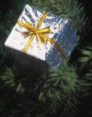 Ornements d'arbre de noël — Photo