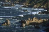 скалистая река — Стоковое фото