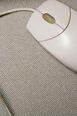 Computer Mouse — Zdjęcie stockowe
