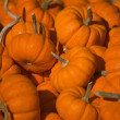 Pumpkins — Stock Photo #31610029