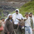 Jesus Journey On The Donkey — Stock Photo #31610123