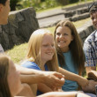Group Of Teens Talking — Stock Photo #31611383