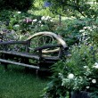 Bench In Garden — Stock Photo #31611577