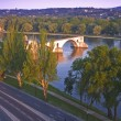 Avignon From Rhone River Provence France — Stock Photo