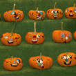 Stock Photo: Pumpkin Faces