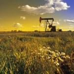 An Oil Derrick — Stock Photo