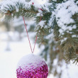 A Tree With A Decoration — Stock Photo
