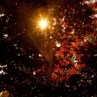 Sun Shining Through Autumn Leaves — Stock Photo