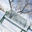 A Bench Alone In A Park In Winter — Stok fotoğraf