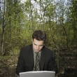 Working On A Pc In A Woodland Glade — Stock Photo