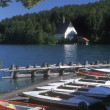 Small Lakeside Harbor — Stock Photo #31619743