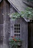 Wooden Building And Window Box — Stock Photo